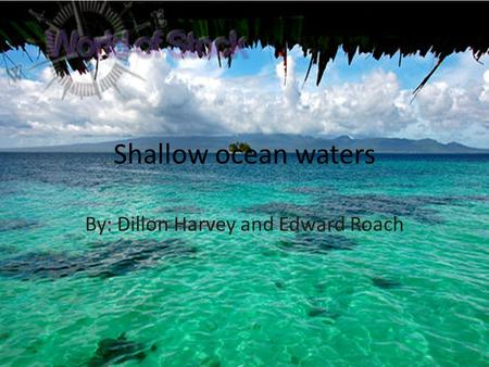 Shallow ocean waters By: Dillon Harvey and Edward Roach.