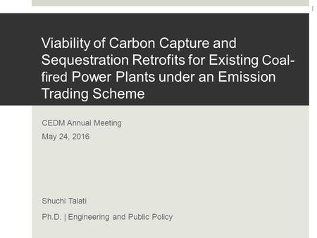Viability of Carbon Capture and Sequestration Retrofits for Existing Coal- fired Power Plants under an Emission Trading Scheme CEDM Annual Meeting May.