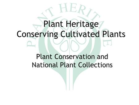 Plant Heritage Conserving Cultivated Plants Plant Conservation and National Plant Collections.