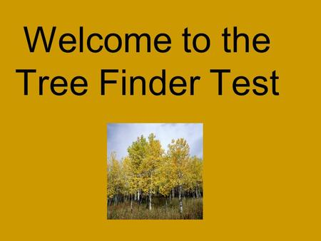 Welcome to the Tree Finder Test. Required Trees 2010 Leaf and Tree Finder Pacific Northwest Trees List Common Tree NameCommon Family NameCommon Tree NameCommon.
