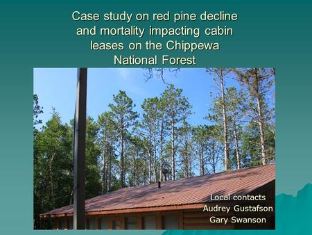 Case study on red pine decline and mortality impacting cabin leases on the Chippewa National Forest Local contacts Audrey Gustafson Gary Swanson.