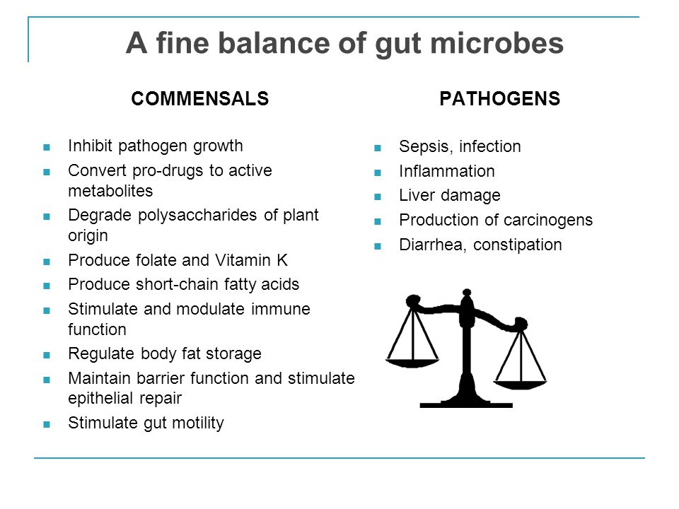 Low diversity and imbalances in gut microbiota are associated with human disease states Health High biodiversity and richness Stable Primarily Bacteroides and Firmicutes Disease Low biodiversity Unstable Increased abundances of Proteobacteria, Fusobacteria, Verrucomicrobia C.
