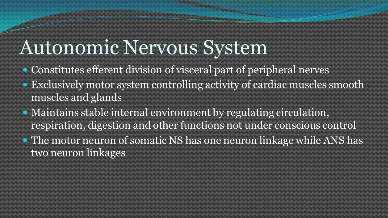 Anatomical Difference b/w the Somatic and Autonomic Nervous system Motor neuron of somatic nervous system as one neuron linkage up to the effector organ CNS  Effector organs Motor neuron of the autonomic nervous system has two neuron linkage up to the effector organ (Viscera) CNS  Preganglionic fiber (Myelineated)  ganglion  post ganglionic fiber (unmyelieneated)  effector organ