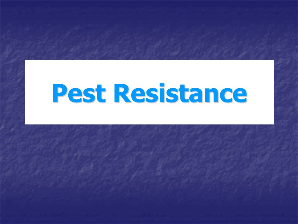 The development of resistance to a pesticide is perceived in a number of ways (McKenzie, 1996): Farmers, horticulturists or agricultural advisers Farmers, horticulturists or agricultural advisers Recognize resistance as a decrease in the effectiveness of control of a pest provided by a chemical Recognize resistance as a decrease in the effectiveness of control of a pest provided by a chemical Geneticist Geneticist Attempts to define the heritable basis of the resistance phenotype Attempts to define the heritable basis of the resistance phenotype