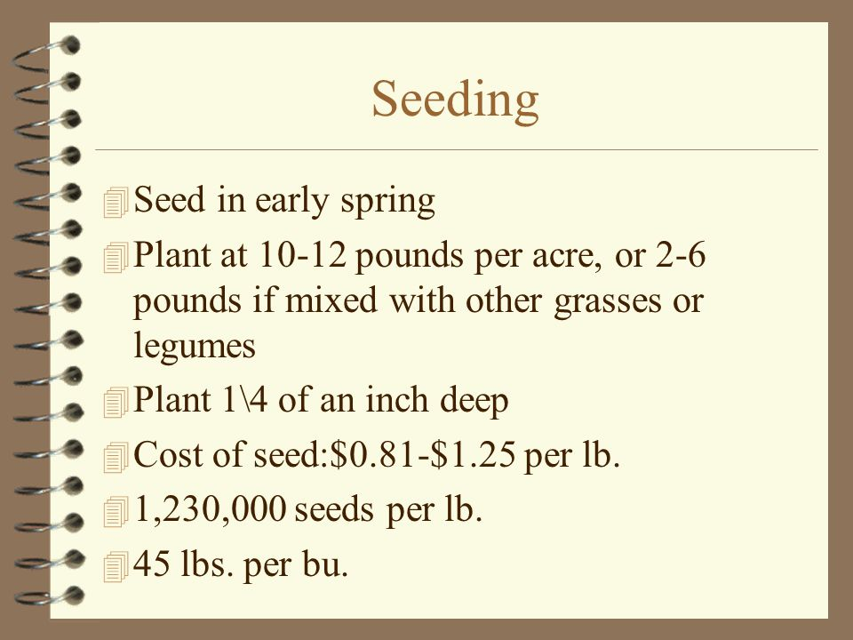 Seeding  Seed in early spring  Plant at 10-12 pounds per acre, or 2-6 pounds if mixed with other grasses or legumes  Plant 1\4 of an inch deep  Cost of seed:$0.81-$1.25 per lb.