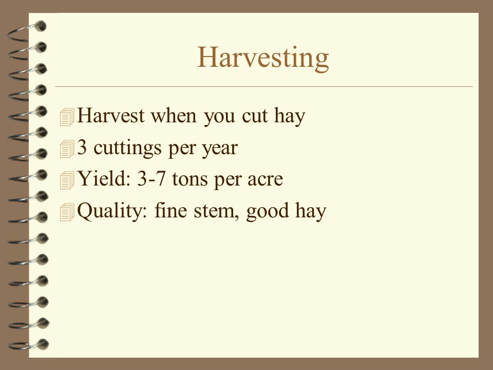 Harvesting  Harvest when you cut hay  3 cuttings per year  Yield: 3-7 tons per acre  Quality: fine stem, good hay