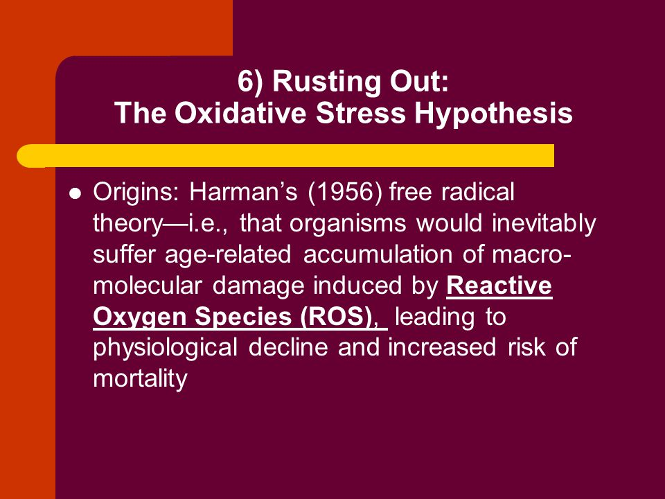 OSH cont'd: More recently, animal studies provide substantial correlative data to support the hypothesis.