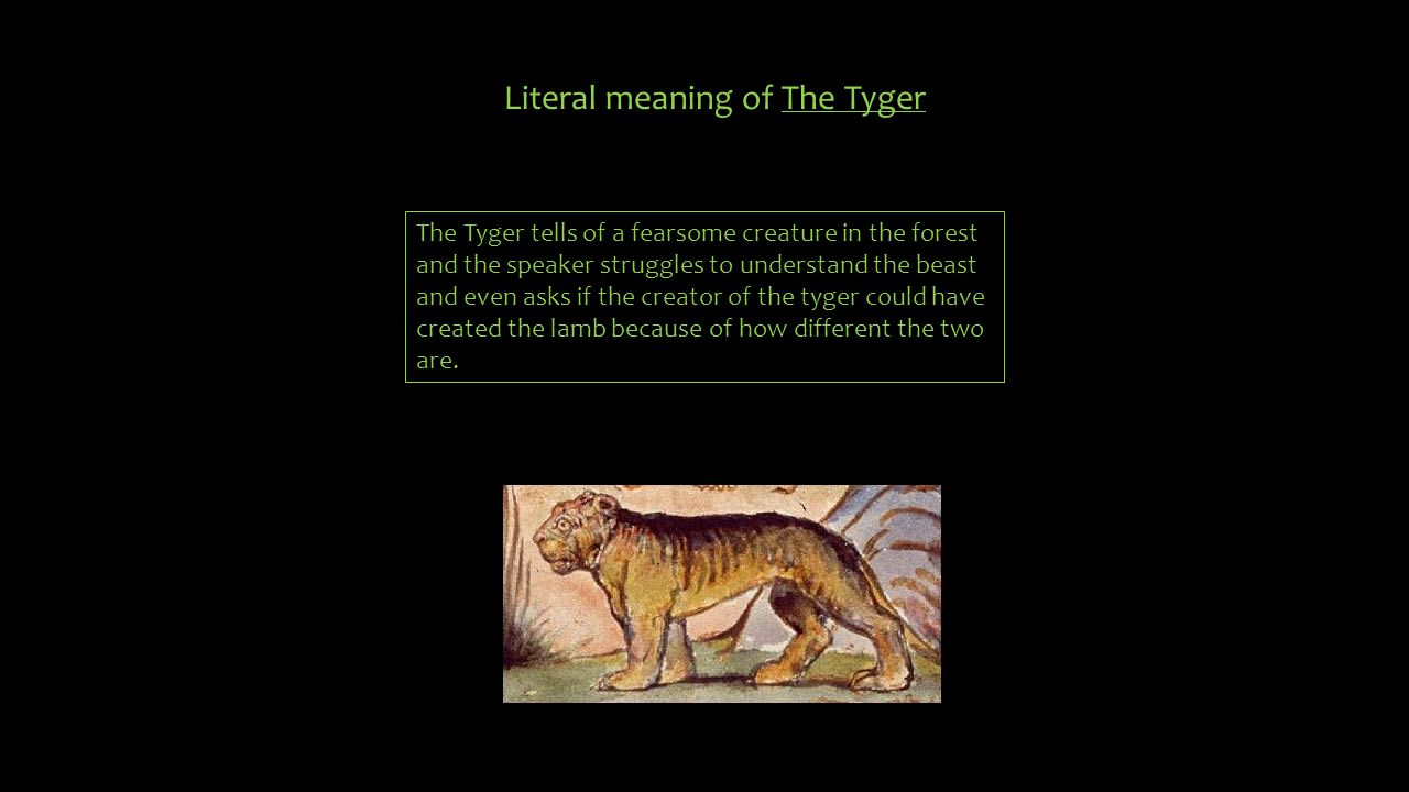 Figurative meaning of The Tyger Figuratively the meaning of this poem is to acknowledge that the creator of innocence and peace could have created such courage and fearsome power.