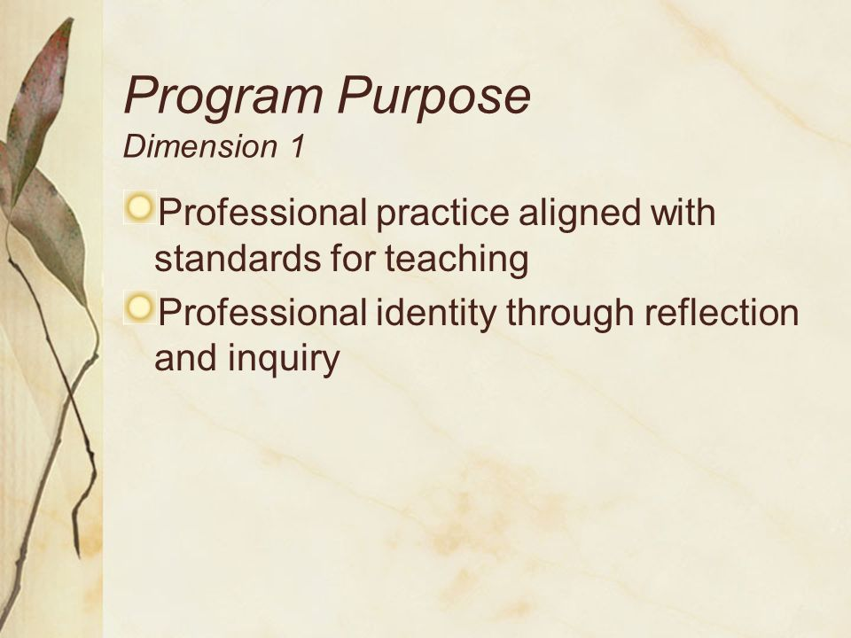 Program Purpose – Dimension I Manage the day-to-day challenges of teaching.