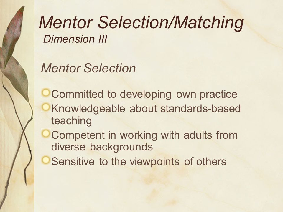 Mentor Selection Dimension III Commitment to mentor responsibilities Dedication to ethical practices Professional and emotional support Similar teaching assignments