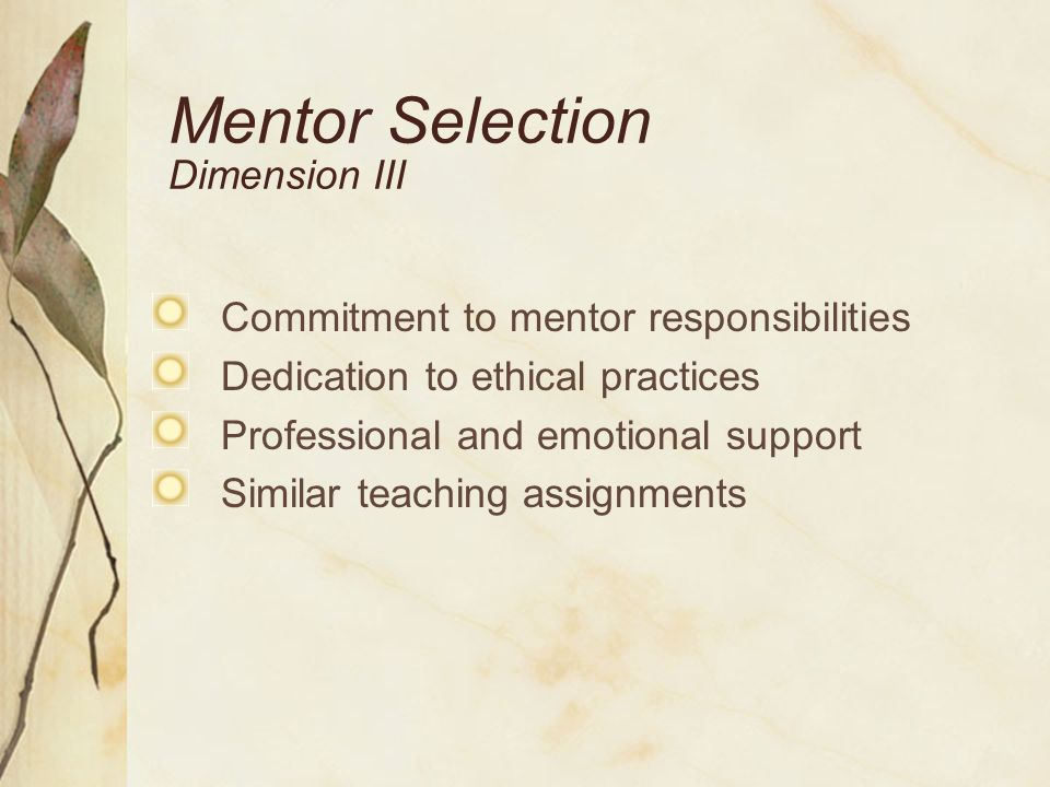 Mentor Preparation Dimension IV Analyze and reflect on classroom teaching and mentor/novice interactions Understand needs/concerns of novices Foster productive conversations