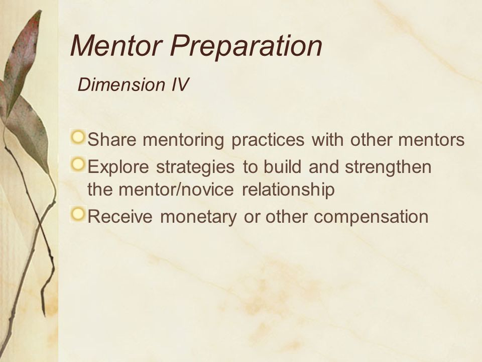 Mentor Roles Dimension V Support and facilitate standards-based practice Facilitate and model self-reflection, problem-solving, and instructional improvement