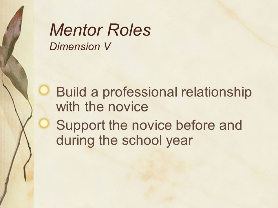 Mentor Roles Dimension V Support and challenge the novice on his or her teaching practices Interact both formally and informally Offer empathy and assistance to novices coping with the stresses of teaching