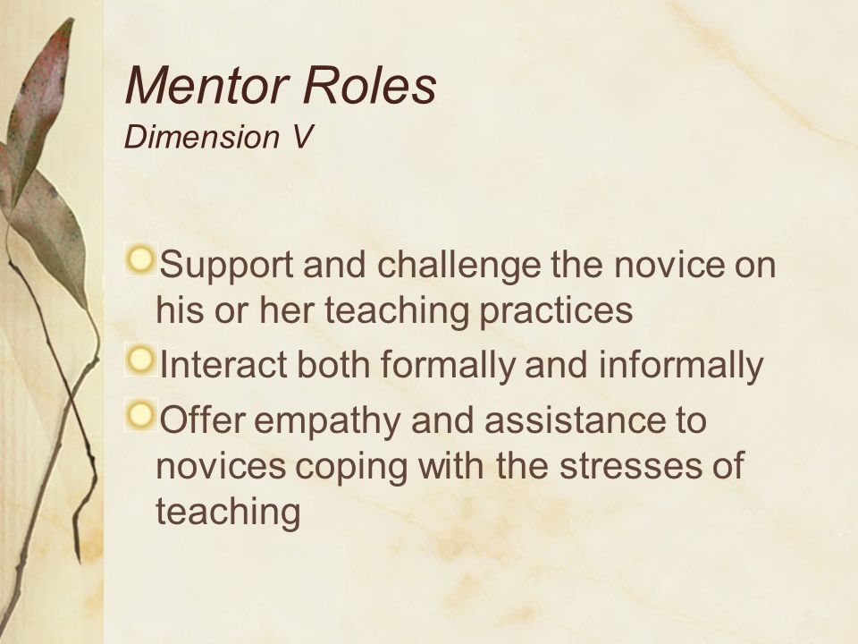 Coordinator Dimension VI Program Coordination, Implementation and Evaluation Committed to program purposes Knowledgeable and experienced in mentoring initiatives Effective in working with people of diverse backgrounds Adept in coordinating professional development for mentors and novices