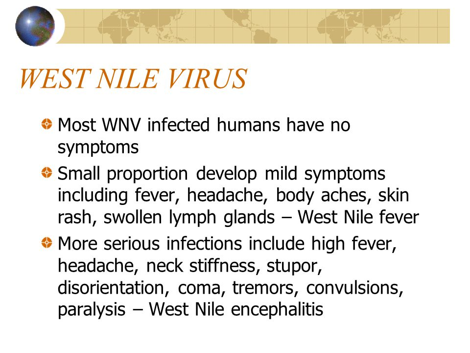 WEST NILE VIRUS Less than 1% develop more severe symptoms including meningitis or encephalitis Estimated 1 in 1000 (0.1%) developing encephalitis die No specific treatment or vaccination
