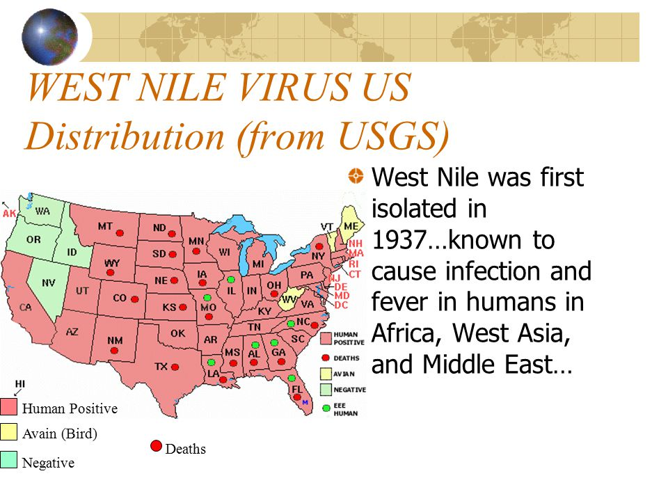 WEST NILE VIRUS US Distribution (From CDC)