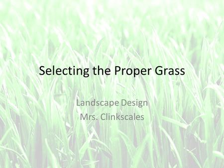 Selecting the Proper Grass Landscape Design Mrs. Clinkscales.