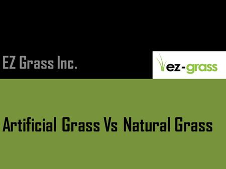 Artificial Grass Vs Natural Grass EZ Grass Inc.. Natural Grass Introduction Natural Grasses include cereals, bamboo and the grasses of lawns and grassland.