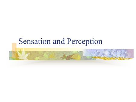 Sensation and Perception. Our Sensational Senses Defining sensation and perception The riddle of separate senses Measuring the senses Sensory adaptation.