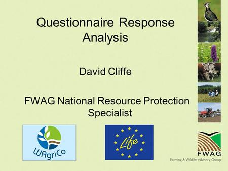 Questionnaire Response Analysis David Cliffe FWAG National Resource Protection Specialist.