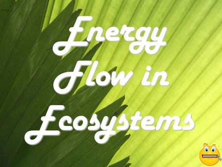 Energy Flow in Ecosystems. All Organisms Need Energy To Survive! Some organisms get energy by making it themselves These organisms are called autotrophs.