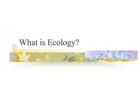 "What is Ecology? Origin of the word… "" ecology "" Greek origin OIKOS = household LOGOS = study of… Study of the "" house/environment "" in which we live."