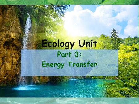 Ecology Unit Part 3: Energy Transfer. All organism need energy to carry out essential functions –For example: growth, movement, maintenance & repair,