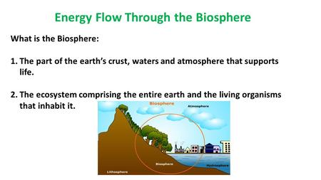 Energy Flow Through the Biosphere What is the Biosphere: 1.The part of the earth's crust, waters and atmosphere that supports life. 2.The ecosystem comprising.