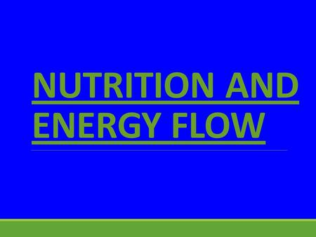 NUTRITION AND ENERGY FLOW HOW ORGANISMS OBTAIN ENERGY -Producers: AUTOTROPHS make their own food -Consumers: HETEROTROPHS take their food in ready made.