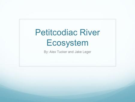 Petitcodiac River Ecosystem By: Alex Tucker and Jake Leger.