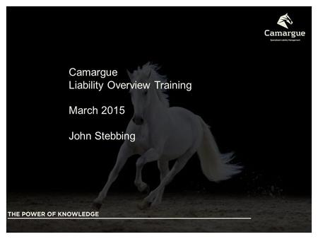 Beyond Insurance Camargue Liability Overview Training March 2015 John Stebbing.