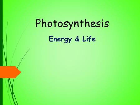 Photosynthesis Energy & Life. Objectives  Explain why almost all organism depend on photosynthesis  Describe the role of ATP in cellular activities.
