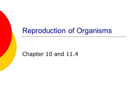 Reproduction of Organisms Chapter 10 and 11.4. Reproduction of Organisms 1. Asexual Reproduction—formation of offspring from a single parent.