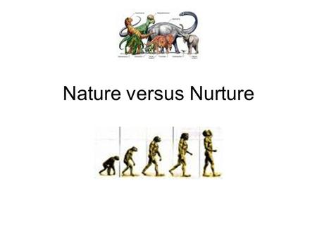 Nature versus Nurture. Nature People behave the way they do because they are animals who act in accordance with their animal instincts and are determined.
