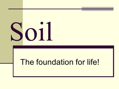Soil The foundation for life!. How much soil is there?