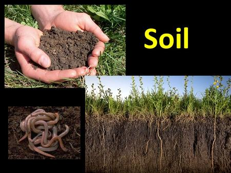 Soil. What is Soil Made Of? 1.Minerals 2.Bacteria and Organic materials 3.Air 4.Moisture A true soil consists of 4 main parts. If one of these parts is.