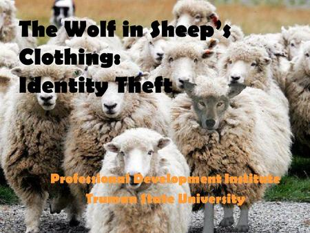 The Wolf in Sheep's Clothing: Identity Theft Professional Development Institute Truman State University.