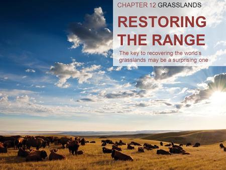 RESTORING THE RANGE CHAPTER 12 GRASSLANDS The key to recovering the world's grasslands may be a surprising one.