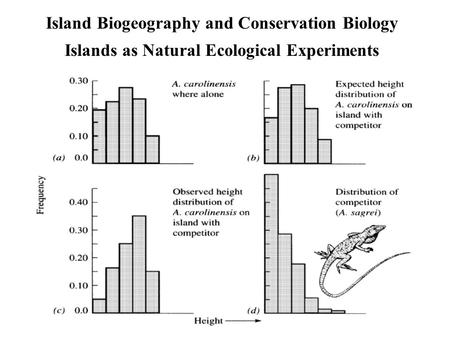 Island Biogeography and Conservation Biology Islands as Natural Ecological Experiments.
