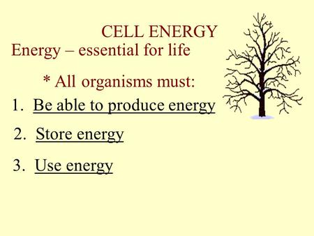 CELL ENERGY Energy – essential for life * All organisms must: 1. Be able to produce energy 2. Store energy 3. Use energy.