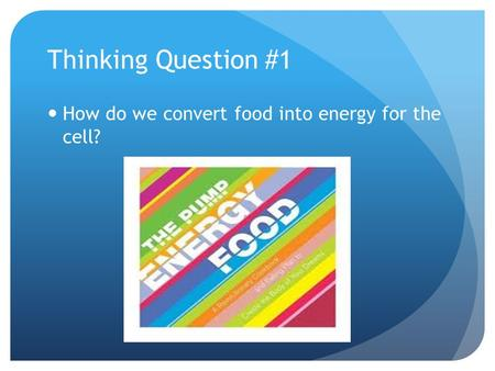 Thinking Question #1 How do we convert food into energy for the cell?