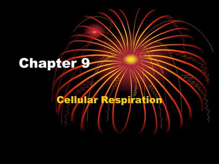 Chapter 9 Cellular Respiration. Chemical Energy and Food Food - fats, sugars, and protein - serves as a source of chemical energy for cells The chemical.