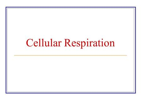 Cellular Respiration. Chemical Pathways for Glucose Glucose Glycolysis Krebs cycle Electron transport Fermentation (without oxygen) Alcohol or Lactic.