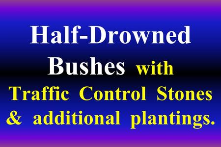 Half-Drowned Bushes with Traffic Control Stones & additional plantings.