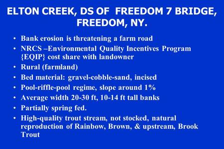 ELTON CREEK, DS OF FREEDOM 7 BRIDGE, FREEDOM, NY. Bank erosion is threatening a farm road NRCS –Environmental Quality Incentives Program {EQIP} cost share.