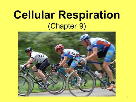 Cellular Respiration (Chapter 9) 1. When you are hungry, how do you feel? If you are like most people, your stomach may seem empty, you might feel a little.