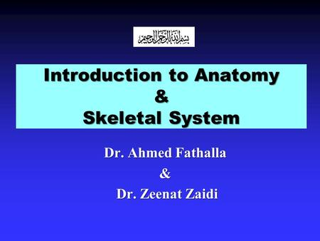 Introduction to Anatomy & Skeletal System