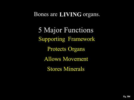 Bones are organs. 5 Major Functions LIVING Supporting Framework Protects Organs Allows Movement Stores Minerals Pg. 386.