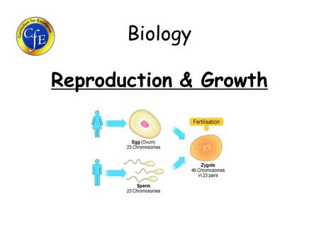 Biology Reproduction & Growth. Learning Intentions 1.What is sexual reproduction? 2.What process leads to the formation of gametes? 3.What structures.