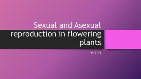Sexual and Asexual reproduction in flowering plants 4/11/16.